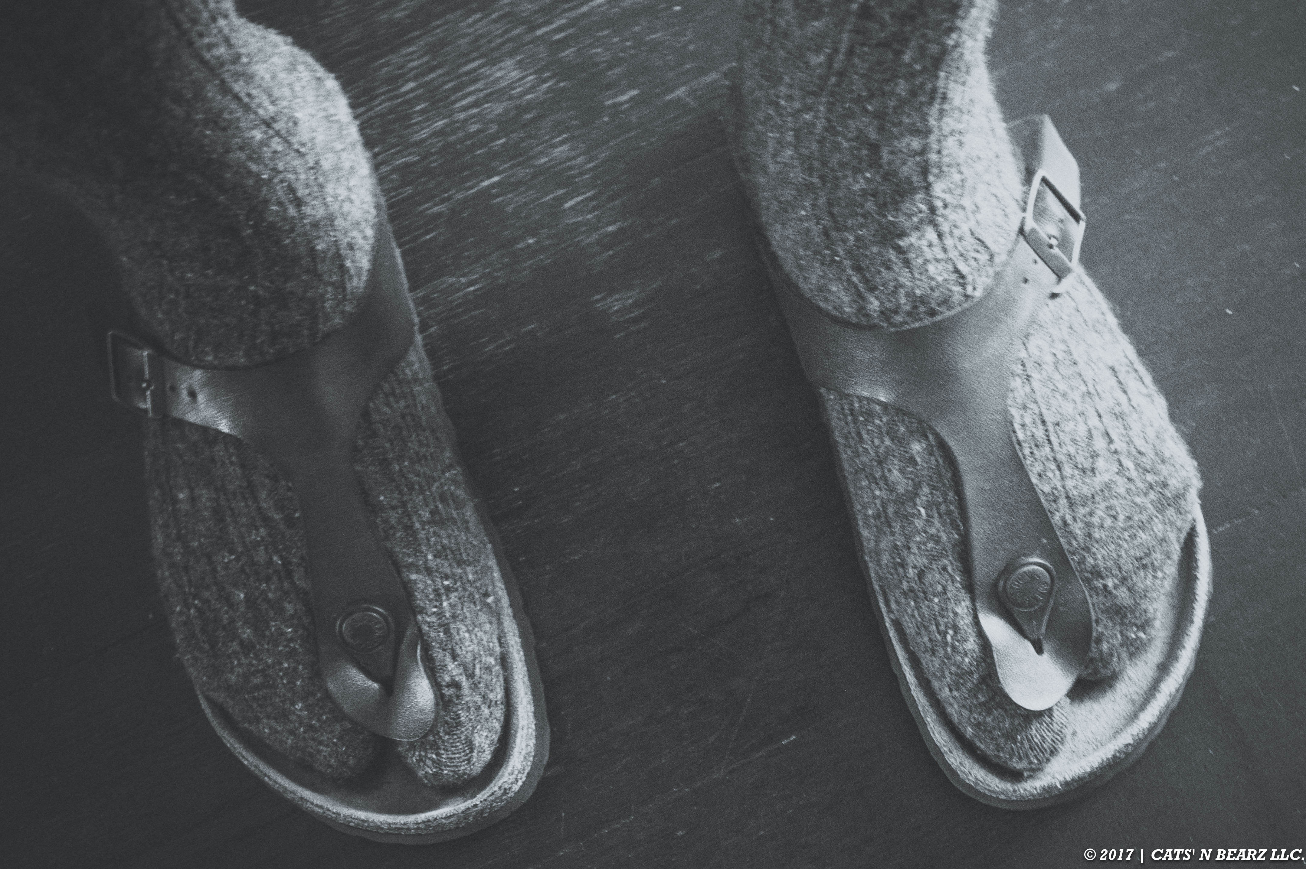 A Picture of Momma C's Feet Because A Mother's Feet Carry the Weight of the Family that No One Ever See's.
